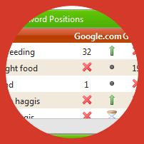 organic rank on the Dashboard